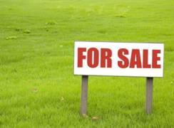 Raw land for sale